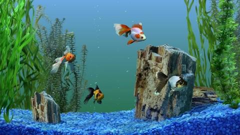 Крошка для аквариума